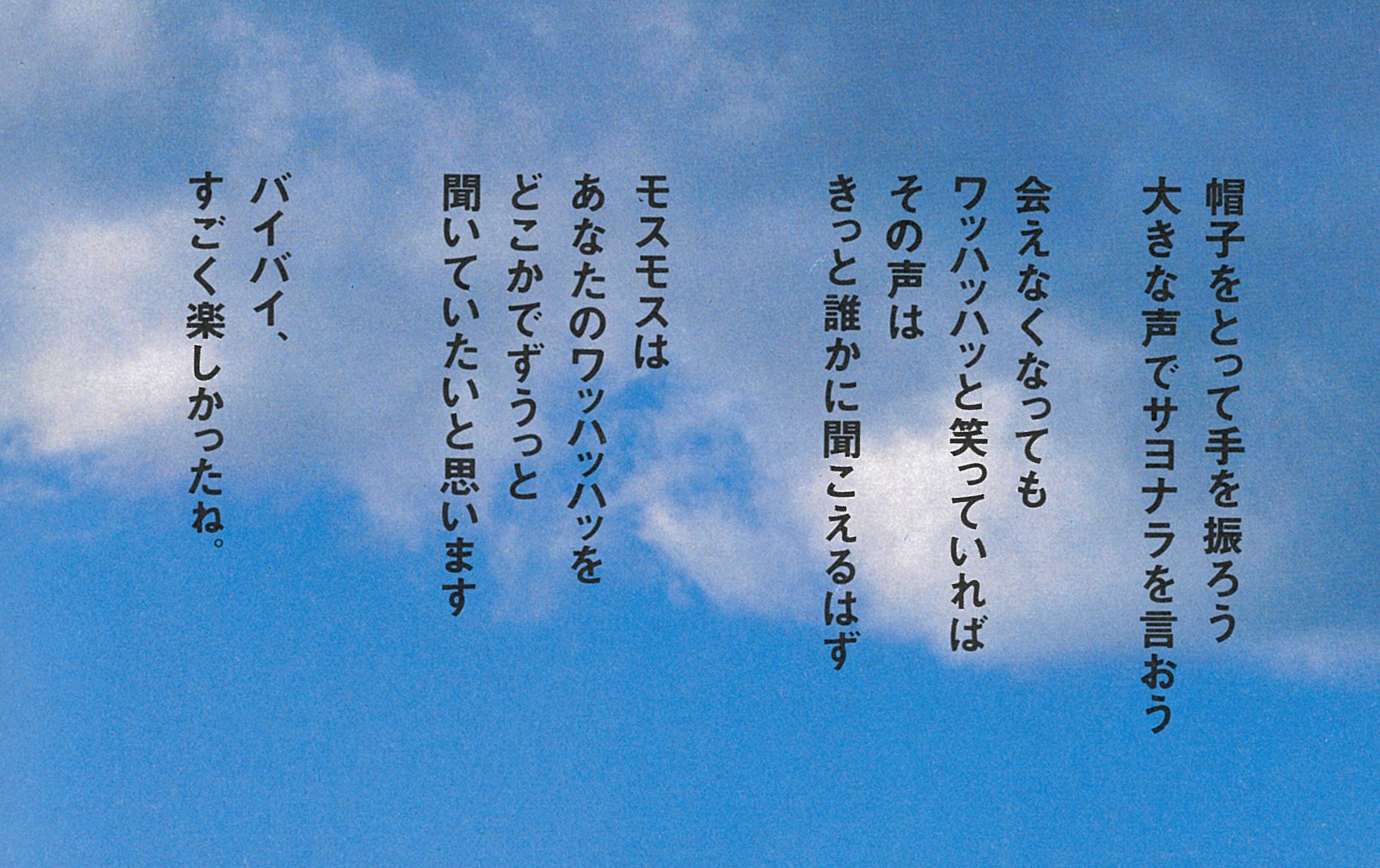 13_mos_last.jpg