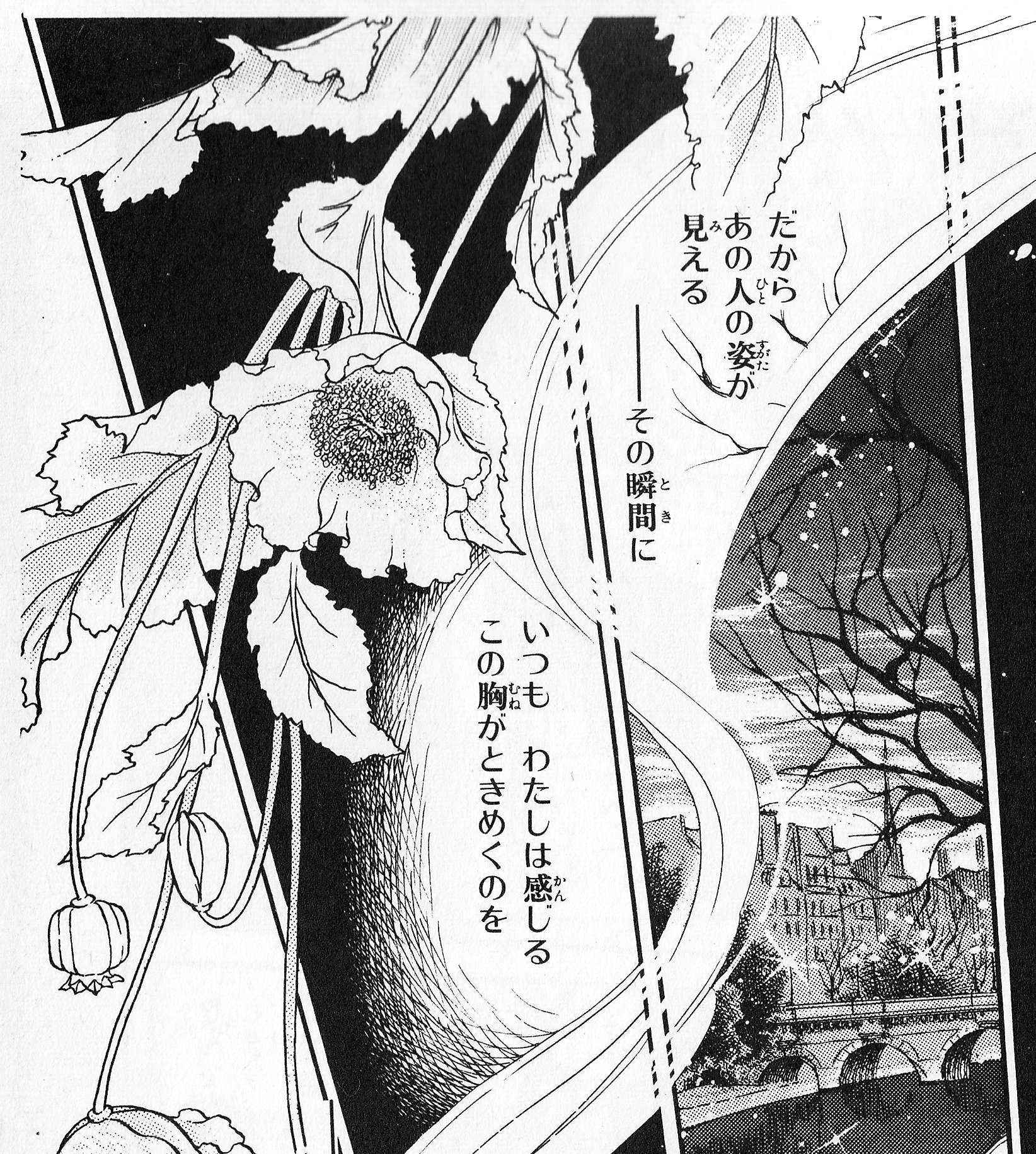 2_風と木の詩.jpg